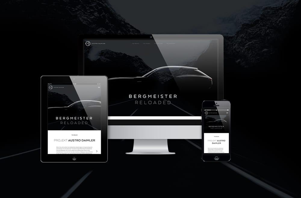 Designtiger Webdesign Wien: Website Gestaltung von Webdesigner Wien 3