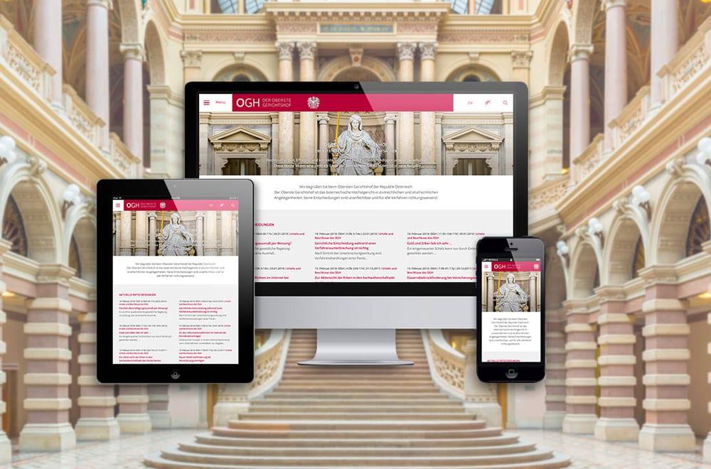 Designtiger Webdesign Wien: Website Gestaltung von Webdesigner Wien 7